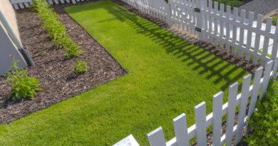Få bugt med muldvarpe i haven